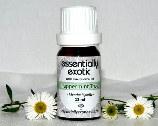 Essential Oil PEPPERMINT True 12ml