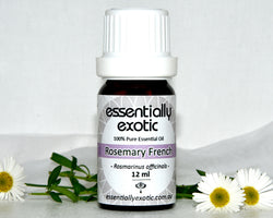 Essential Oil ROSEMARY French 12ml