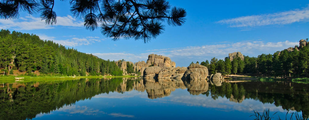 Custer State Park - Custer, South Dakota