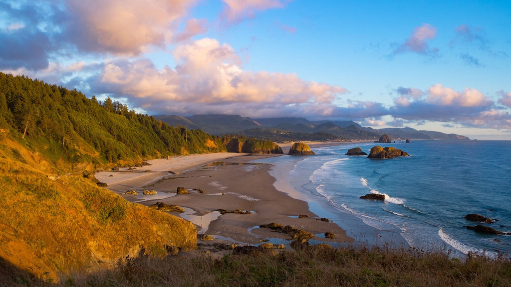 Ecola State Park - Clatsop County, Oregon