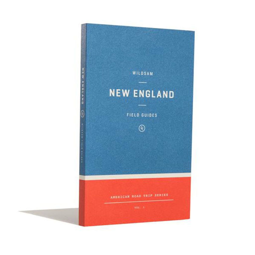 Field Guide: New England