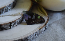Real Butterfly wing necklace