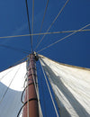10 Survival Tips When Learning How To Sail