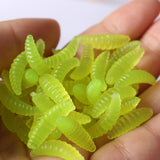 Anmuka™ Premium Smell Worms Glow Shrimps Fishing Lures [PACK 50PCS]
