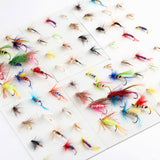 Fishy™ Premium Fly Fishing Bail Pack [120PCS]