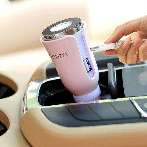 Car Air-Purifier with Dual Power USB Charger - Renaly