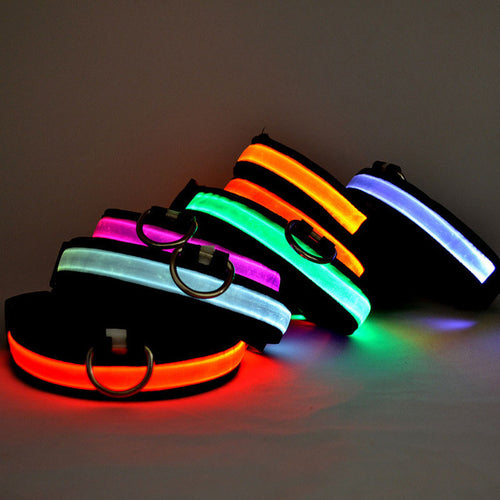 Nylon LED Dog Collar USB Rechargeable Night Flashing Safety Night Glow Dog Pet Cat Collar Led USB Charging For Small Dogs Collar