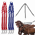 3 Way Dog Leash Coupler Comfort Force Absorbin Bungee Elastic - Dog Toys Box