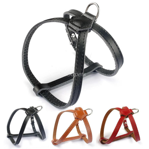 Black Red Brown Colors Small Puppy Cat Leather Harness - Dog Toys Box