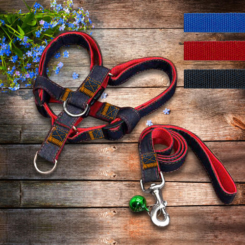 Adjustable No-Pull Denim Dog Leash Collar for Training Walking - Dog Toys Box