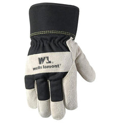 Men's Winter Work Gloves with Leather Palm, 100-gram Insulation, Suede Cowhide, Large (Wells Lamont 5130) 12 Pairs