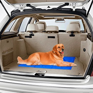 Pet Cooling Mat For the car  - TIROL LTD