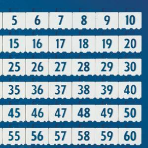 Replacement Counting Number Tile for 1-100 Board