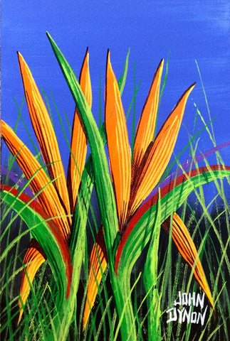 Bird of paradise in the grass