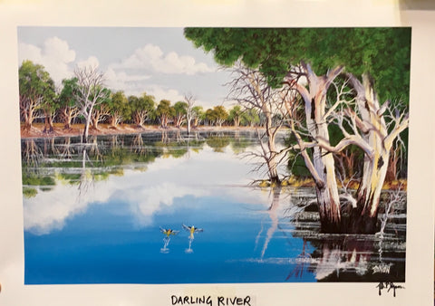 Darling river print