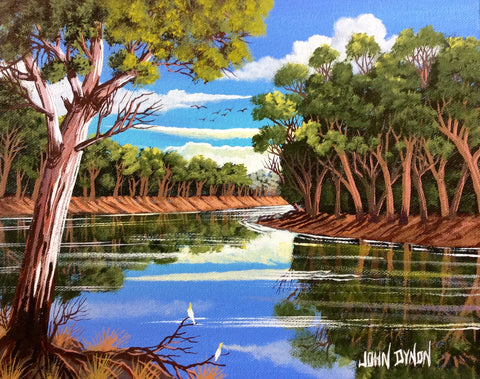 Darling river bend