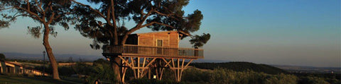 5x luxurious tree houses