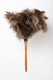 Large Ostrich Feather Duster