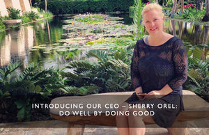 Introducing our CEO – Sherry Orel:  Do Well by Doing Good
