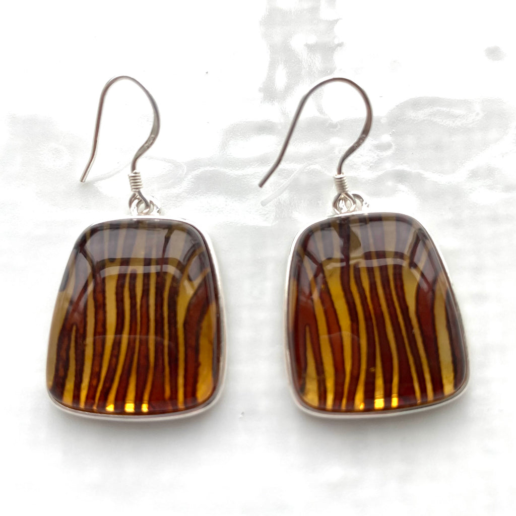 Tiger stripe Baltic amber collection
