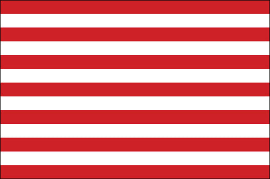 Sons of Liberty Nylon Flag