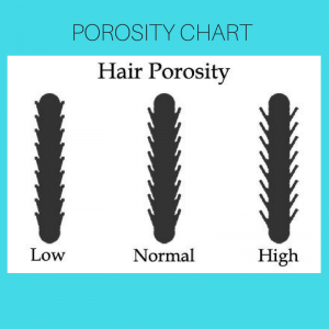 What is my curl type natural curls club porosity is the measure of how your hair will absorb and hold water there are three levels of hair porosity low medium and high urmus Choice Image