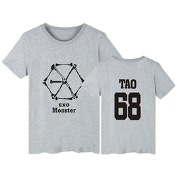 "EXO ""MONSTER"" T-SHIRT GRAY"
