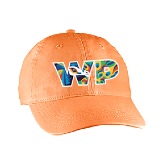 2019 Winter Park Hat