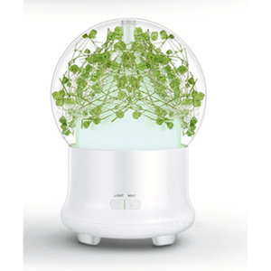 Ultrasonic Flower Aromatherapy Diffuser Humidifiers ejoai Store Green