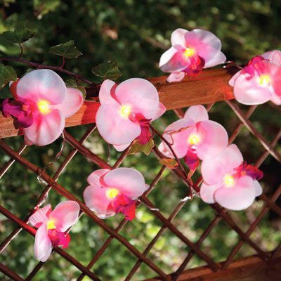 12 Orchid Flower Garden Solar String Lantern Fairy Lights Lamps