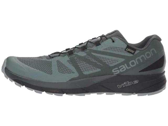 Men's Salomon Sense Ride GTX Invisible Fit (balsam green/urban chic/monument)
