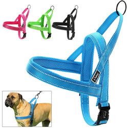 Quick Fit Reflective Stitching Dog Harness