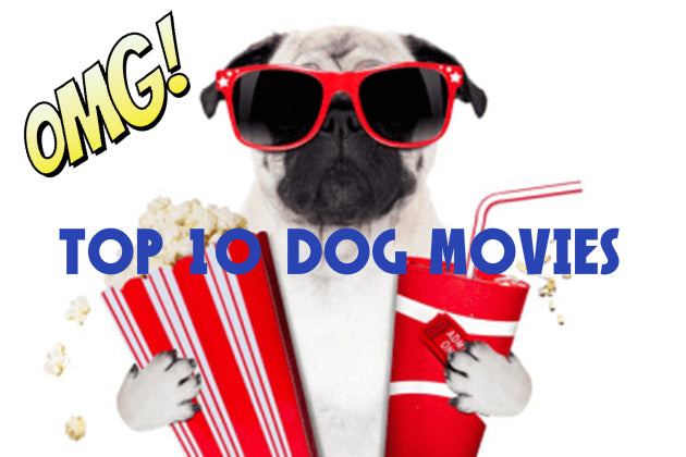 Top 10 of our favorite movies that feature dogs