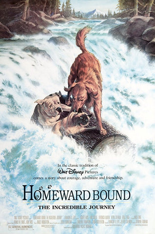 Homeward Bound: The Incredible Journey top 10 dog movies