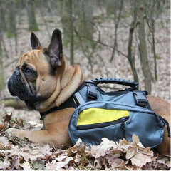 GF Pet 2-In-1 Dog Backpack - Yellow