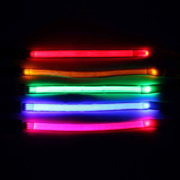 Light Up Doggy LED Dog Leash Collars - DogTrunk