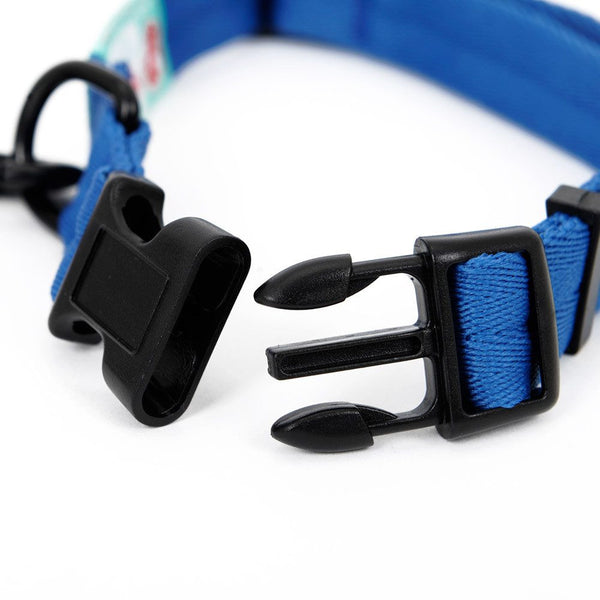 Custom nylon Collar traction leash in 3 Colors Leashes - DogTrunk