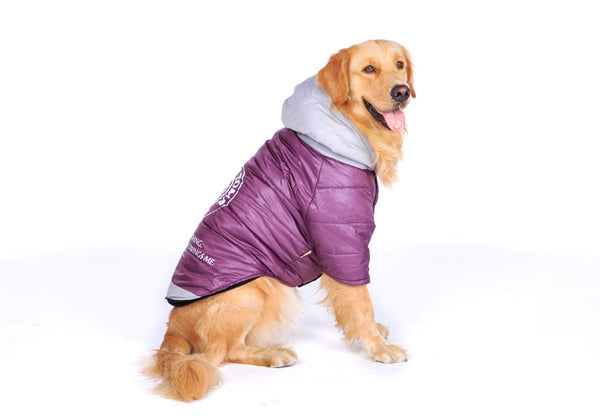 Big Dog clothes Purple Warm Cotton-padded Two Feet Clothes Thicken Hoodie coat jacket Coats - DogTrunk