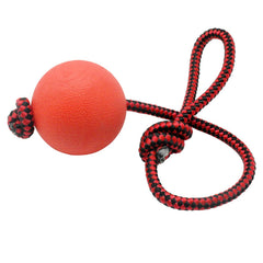 Solid rubber dog chew training ball on a rope