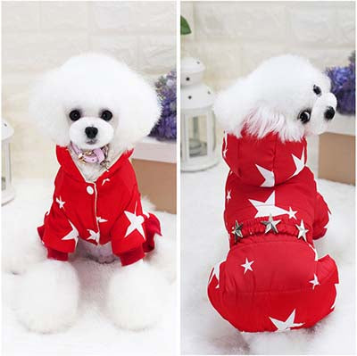 Star Power Dog Winter Coat Jumpsuit Coats - DogTrunk