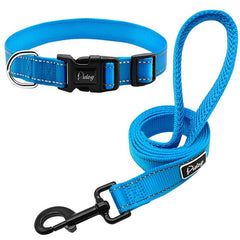 Reflective Dog Collar & Leash Set- Special Value