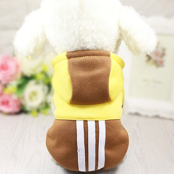 Sporty Bright Dog Hoodie Sweaters - DogTrunk