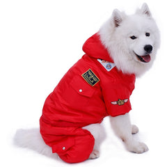 USA Air Force Winter Parka for Big Dogs