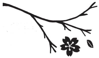 Cherry Blossom Branch with flower and leaf on side (1584J)