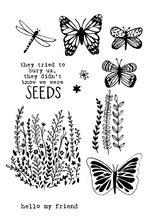 20144 Wildflower Seeds Set