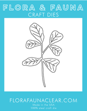 30166 Fig Leaf Plant Die