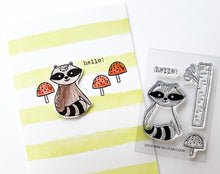 20310 Mini Hello Raccoon