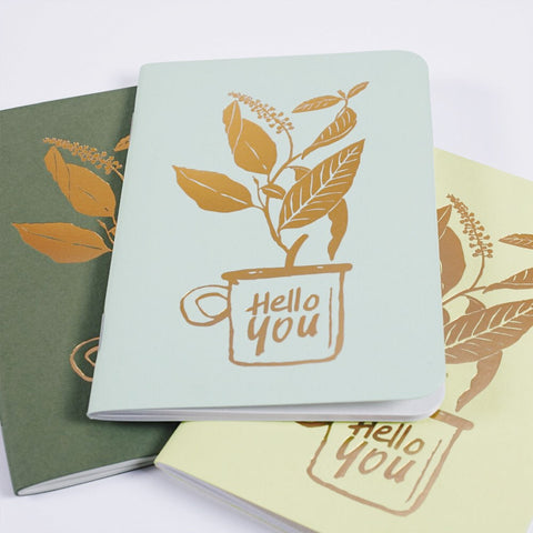 carnets hello you les éditions du paon