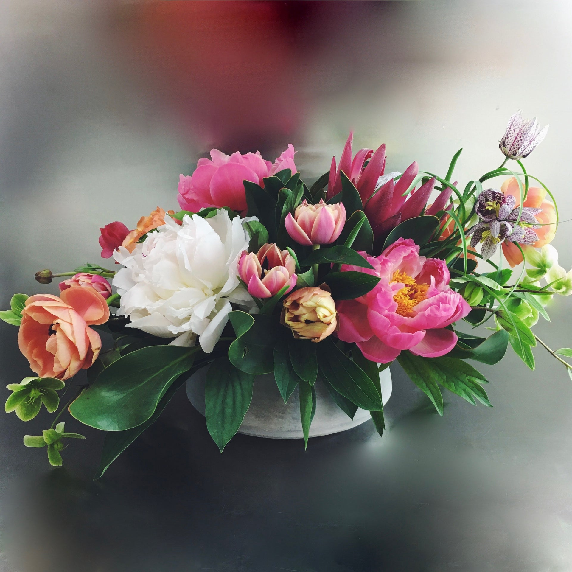 Designer's choice low arrangement using peonies, tulips, and hellebores.