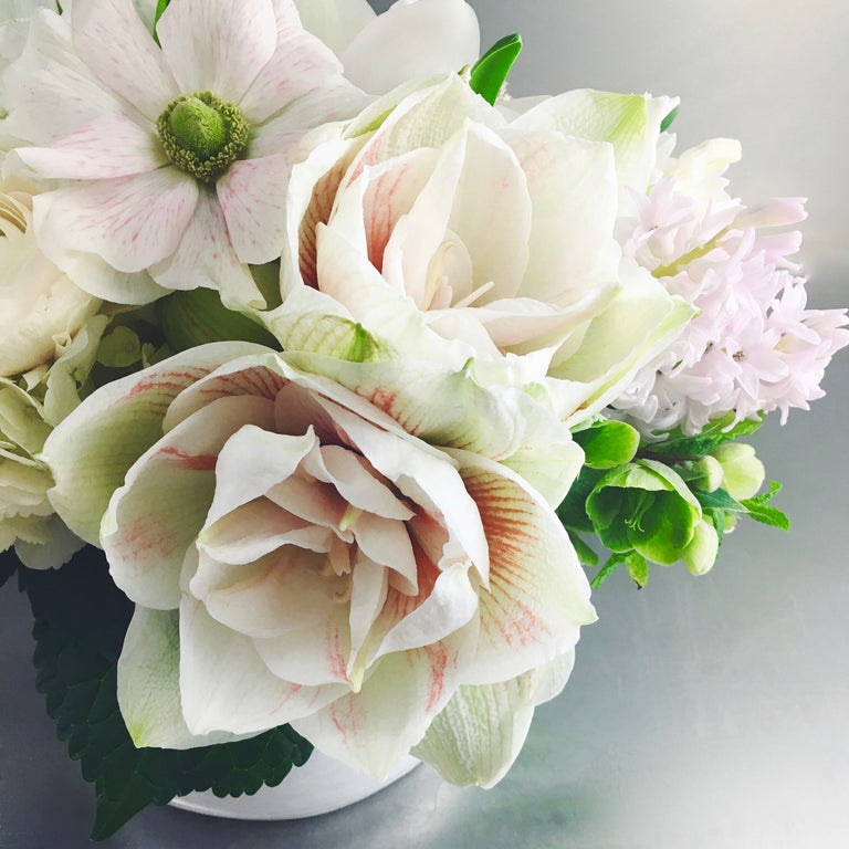 Soft and subdued arrangement in peach, white, and green using amaryllis, anemones, and helleborus.